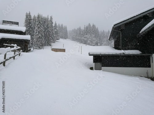 Papiers peints Arctique Neige à Morillon, Haute Savoie