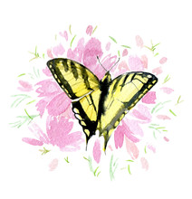 Yellow Butterfly On Pink Flowers Isolated On White Background, Watercolor Illustration
