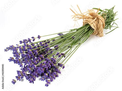 Lavendel Lerretsbilde