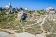 Lighthouse on Top of Capo Testa. North of Sardinia