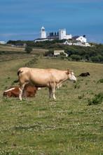 Lizard Lighthouse Cornwall Eng...