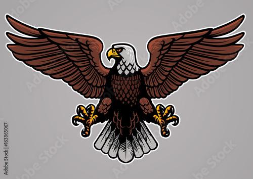 Valokuva bald eagle spread his wings