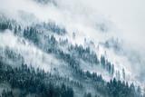 Krajobraz mgły - 163895419