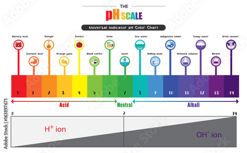 Photo The pH scale Universal Indicator pH Color Chart diagram