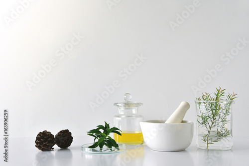 Fotografía  Natural organic botany and scientific glassware, Alternative herb medicine, Natural skin care beauty products, Research and development concept