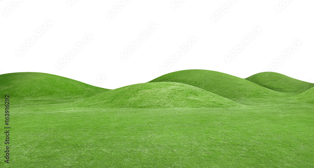 Fototapety, obrazy: panorama of green hills is on white background