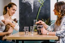 Girlfriends Having Coffee Toge...