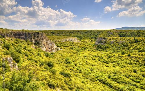 Staande foto Meloen Beautiful summer landscape