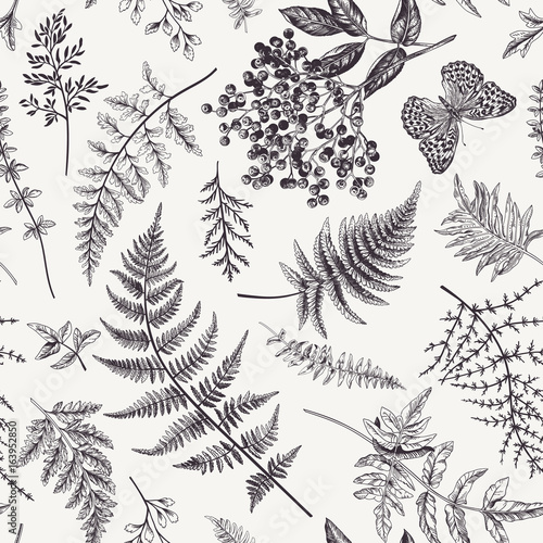 Valokuva Seamless pattern with leaves and butterfly.
