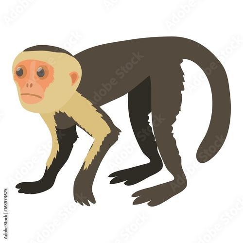 Capuchin icon, cartoon style Wallpaper Mural