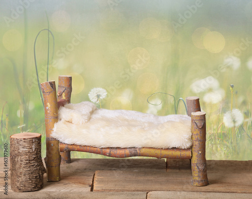 A newborn bed studio digital prop made from Japanese Maple tree branches with a dandelion green meadow nature background Wallpaper Mural