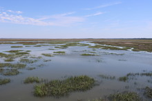 Marshes Of Glynn, Jekyll Islan...