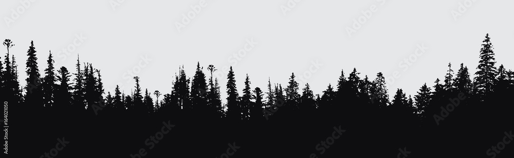 Fototapety, obrazy: forest silhouette background.