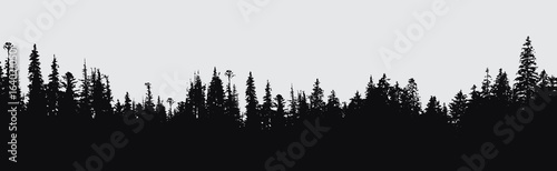forest silhouette background. - 164021050