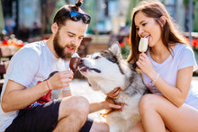 Lovely Hipster Couple Feeding Ice-cream Cute Dog On Street. Family, Pet, Animal And People Concept.