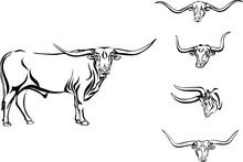 Buffalo, Bull, Head, Horns, Ve...