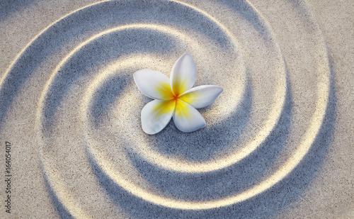 Frangipaniblüte im Sand