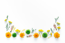Border With Colorful Flowers O...