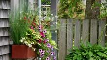 Beautiful Wall Box Flowers