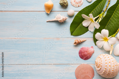 Keuken foto achterwand Frangipani Summer concept with seashell and flowers on blue rustic wooden background with space