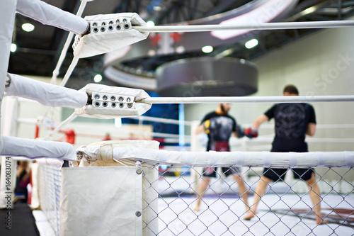 Plakat Szkolenie zawodników mieszanych sztuk walki