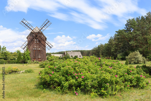 Obrazy na płótnie Canvas Zabytkowy wiatrak drewniany typu koźlak, w przeszłości charakterystyczny dla polskiego krajobrazu wiejskiego.