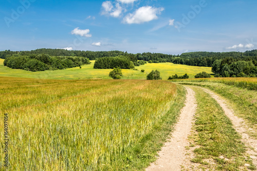 Tuinposter Honing Road through fields - amazing summer countryside