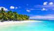 Gorgeous tropical white sandy beach with turquoise sea. Mauritius island