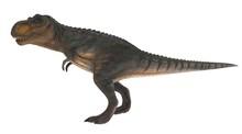 T-rex Standing Side View 3d Il...