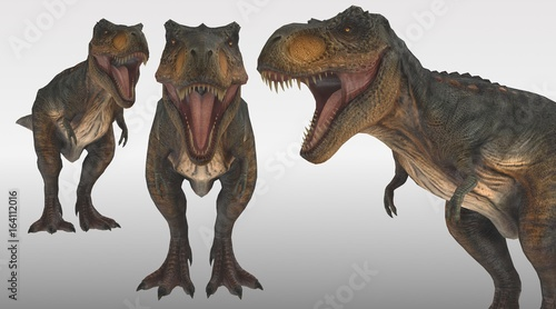 Photo tyrannosaurus rex 3 perspective view 3d rendering