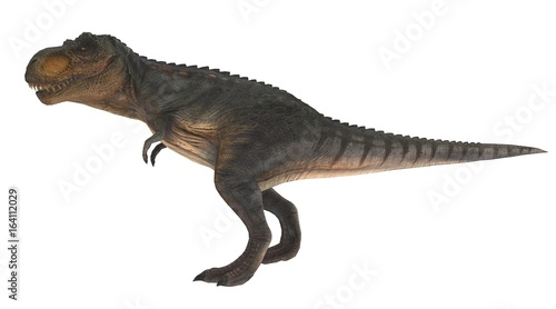 T Rex Standing Side View 3d Illustration Buy This Stock Illustration And Explore Similar Illustrations At Adobe Stock Adobe Stock