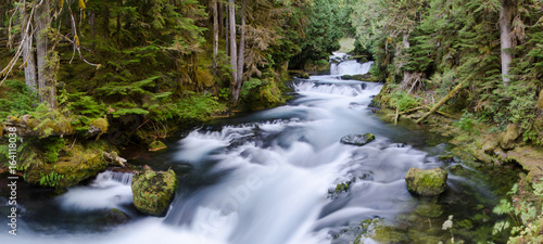 Photo Stands Forest river Clear mountain river flows through forest below distant waterfalls.