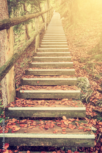 Foto op Canvas Beige Bright Foliage on Vintage Stairway