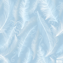 White Feathers A Blue Background.