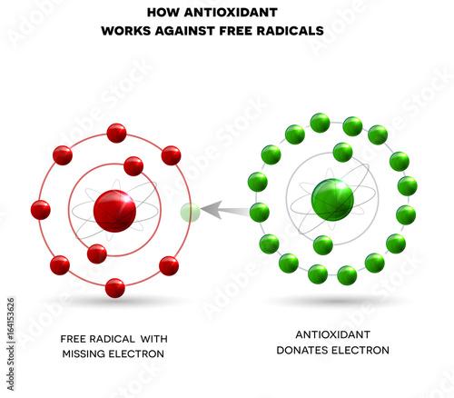 Photo How antioxidant works against free radicals