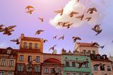 Stare miasto w Warszawie - 164162876