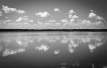 Black And White Lake Landscape