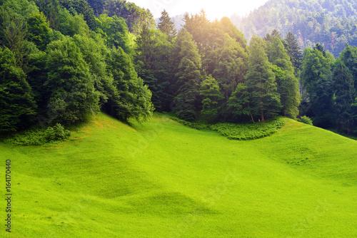 In de dag Lime groen Stunning alpine landscape in canton Uri, Switzerland