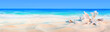 seashells on seashore - beach holiday background fbdbdffd fshfsdhdsfhds