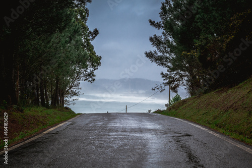 Fotografering  Scenics View of Country Road Amidst Forest Trees Against Coastline and Ocean