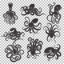 Set Of Isolated Octopus Mascot...