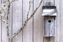 Old Bird Nesting Box.