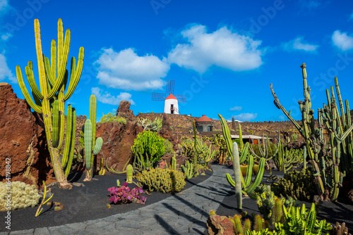 Montage in der Fensternische Kanarische Inseln Cactus garden in Lanzarote, Canary Islands, Spain