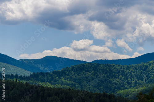 Staande foto Nachtblauw Carpathian mountains landscape in Ukraine in the summer season in Yaremche