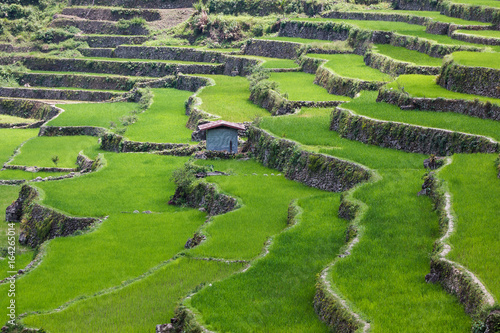 Recess Fitting Rice fields Batad rice field terraces in Ifugao province, Banaue, Philippines