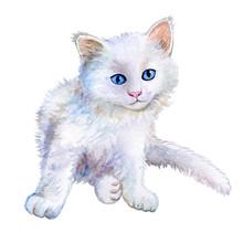 Little White Kitten. Watercolor. Illustration Kitten For Fashion Print, Poster, Textiles, Fashion Design. Close-up. Hand Drawn Illustration