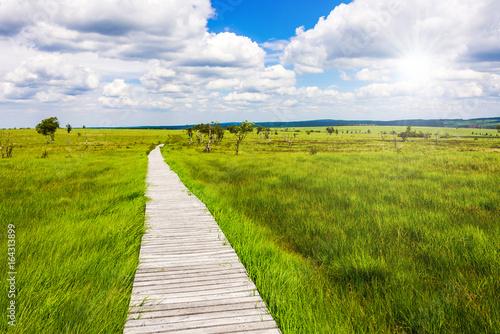 Fotografie, Obraz  Einzigartige Aussicht auf dem Steg mit Weitblick über die Landschaft im Natursch