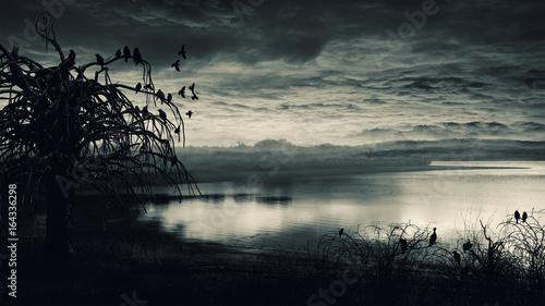 Fotografie, Obraz  Crows on dead tree.
