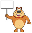 Happy Brown Bulldog Cartoon Mascot Character Holding A Blank Sign. Illustration Isolated On White Background