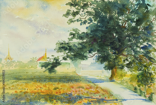 Painting watercolor landscape colorful of rice field,Village view.